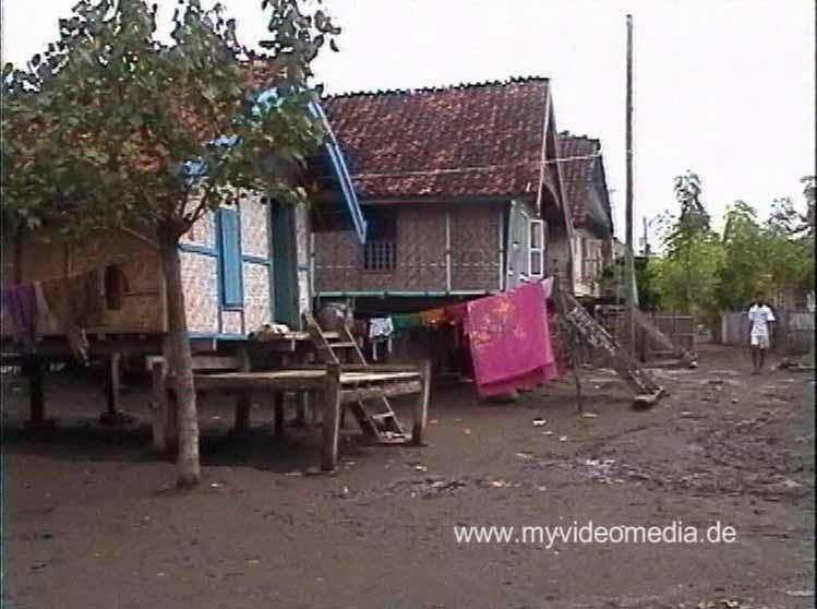 Sambelia Houses