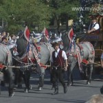 Oktoberfest – Costume and Riflemen's Parade