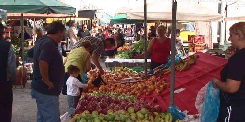Gastouni Farmers Market