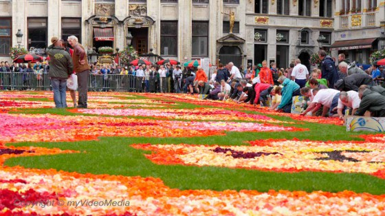 Volonteers building the Flower Carpet