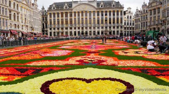 Blumenteppich Bruessel