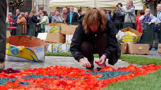 Freiwillige Organisatoren Blumenteppich