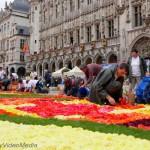 Der Aufbau des Blumenteppichs von Brüssel