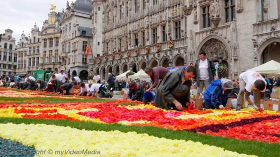 Aufbau des Blumenteppichs