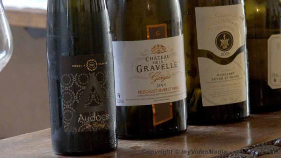 Muscadet wines