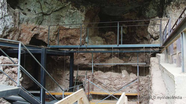 Arbreda Cave