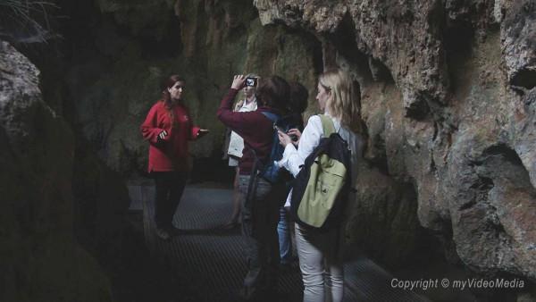 Reclau Viver cave