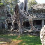 Preah Khan – the holy city of victory