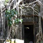 Ta Prohm – the Temple in the Cambodian jungle