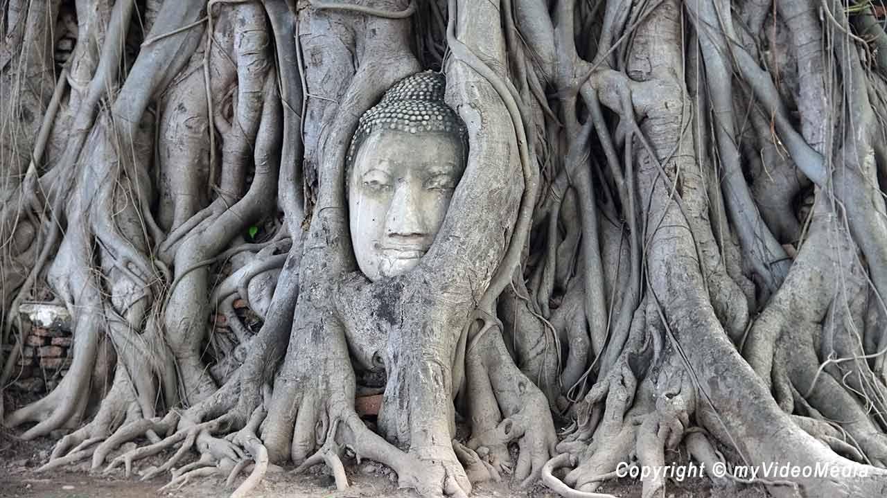 Ayutthaya Travel Video Blog