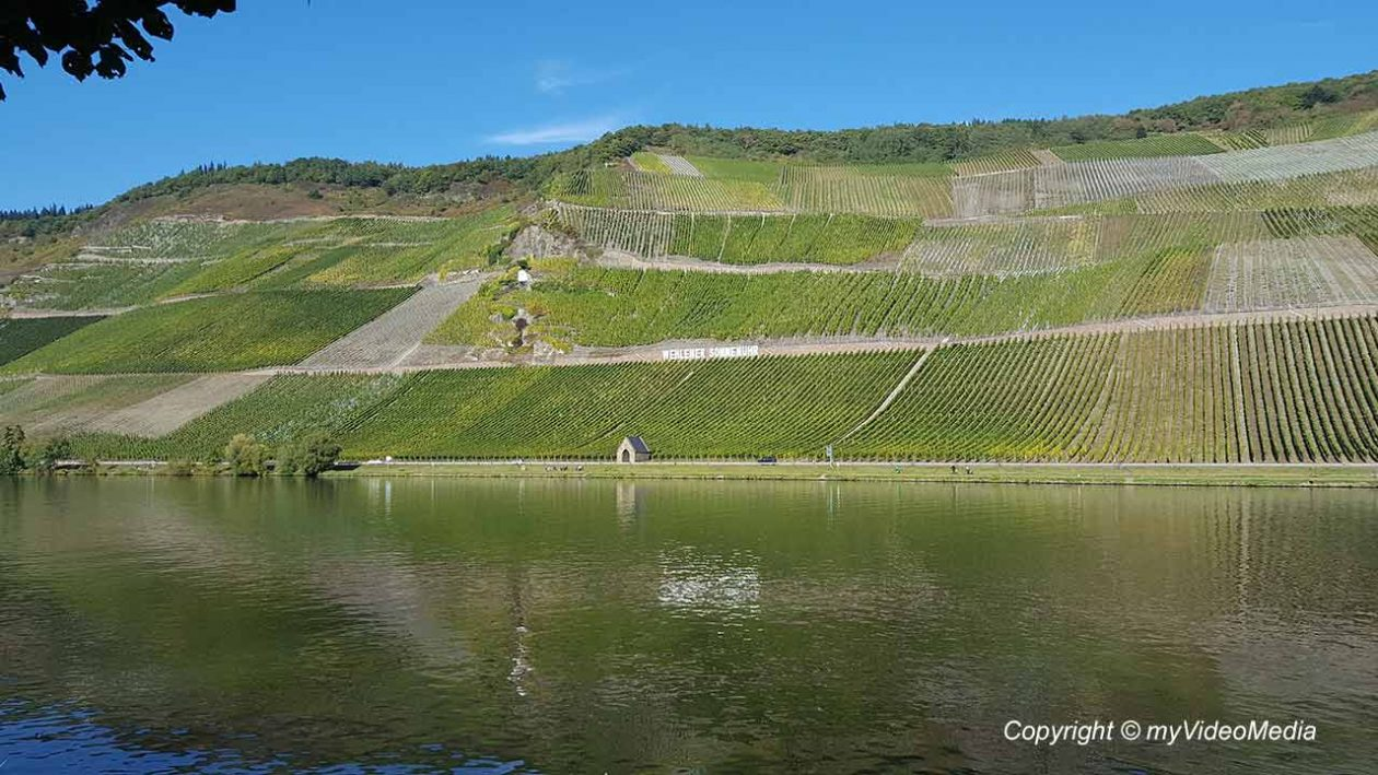 Wehlen at the Moselle