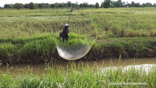 Fisherman Mekong