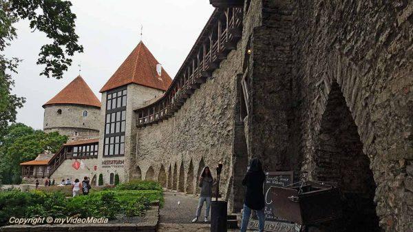 Jungfernturm - Neitsitorn