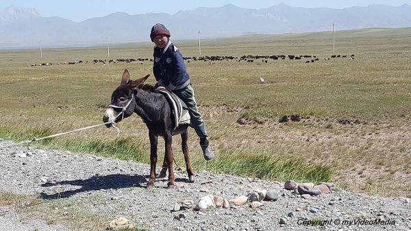Kyzylart-Pass to Sary-Mogol