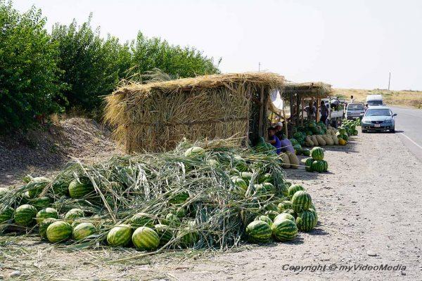 Water melons Uzgen
