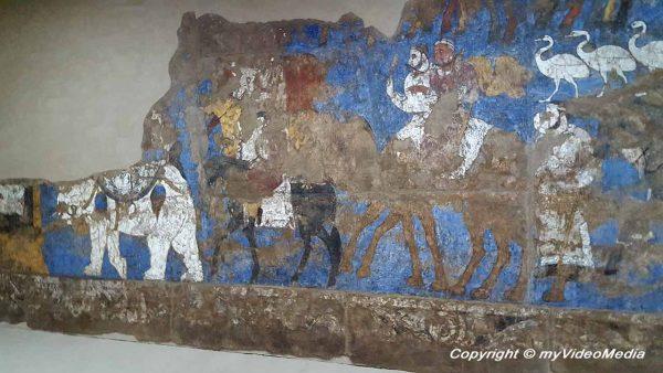 Afrasiab Museum