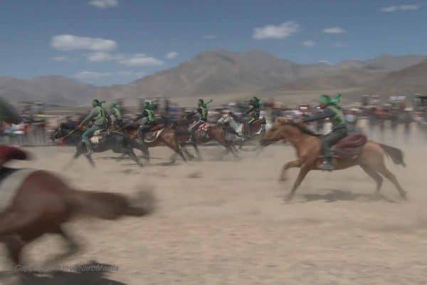 Pferderennen Murghpb