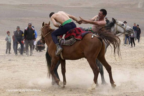 Horse Wrestling at Murghab Horse Festival