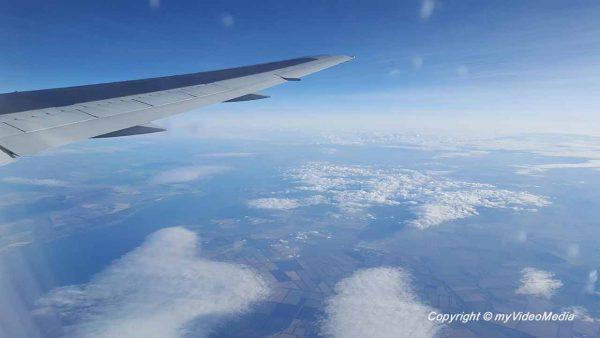 Flight Tashkent Frankfurt