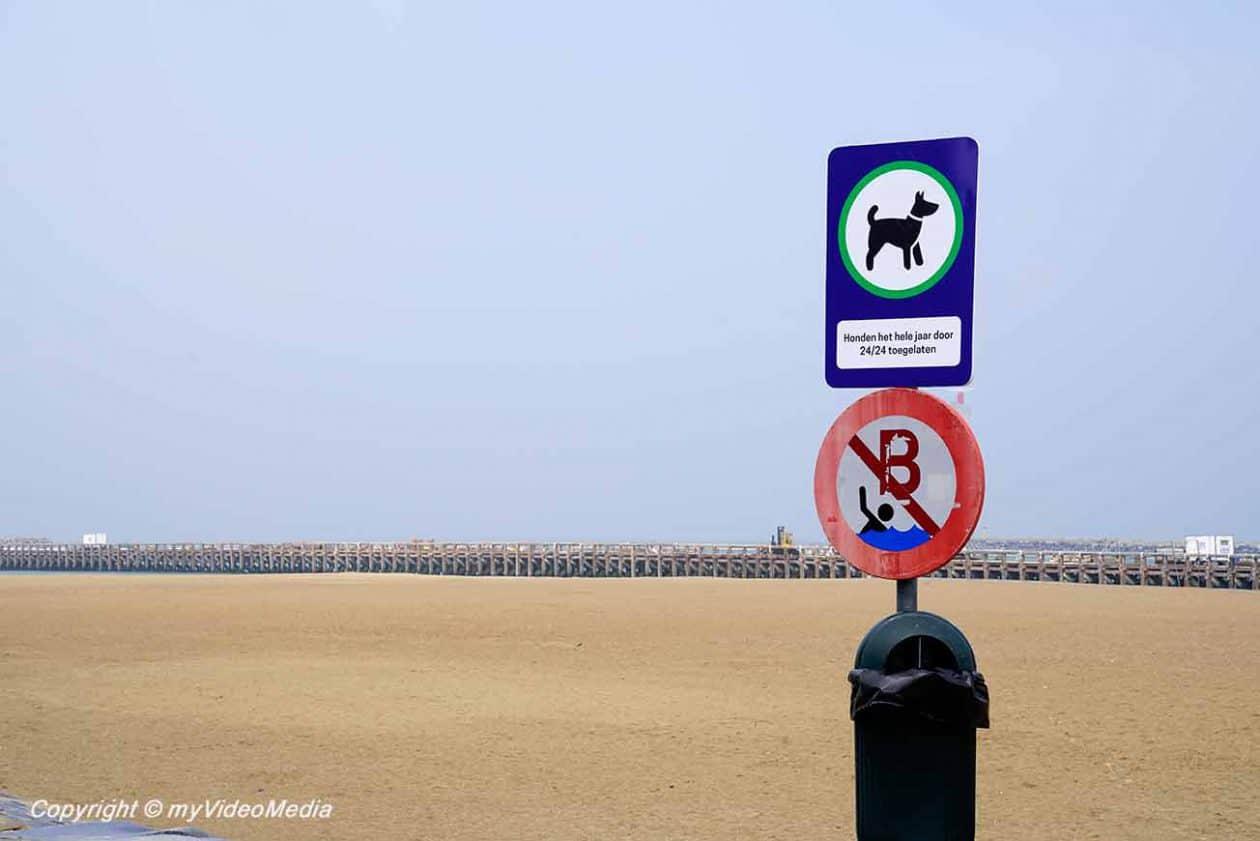 Dog beach Ostend