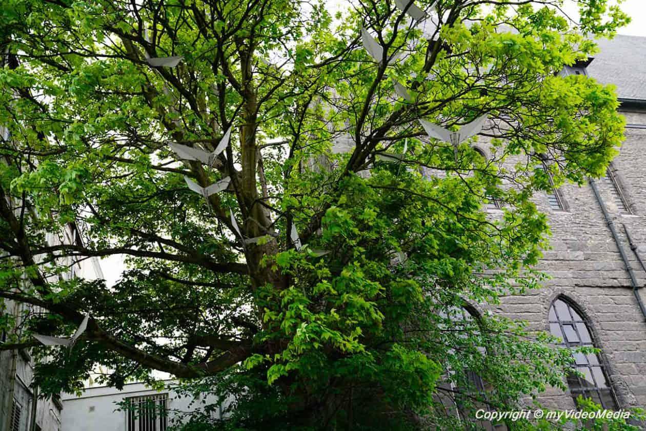 Lightning Bird Tree