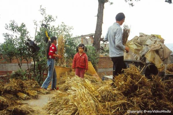 Country life in Yunnan 2004
