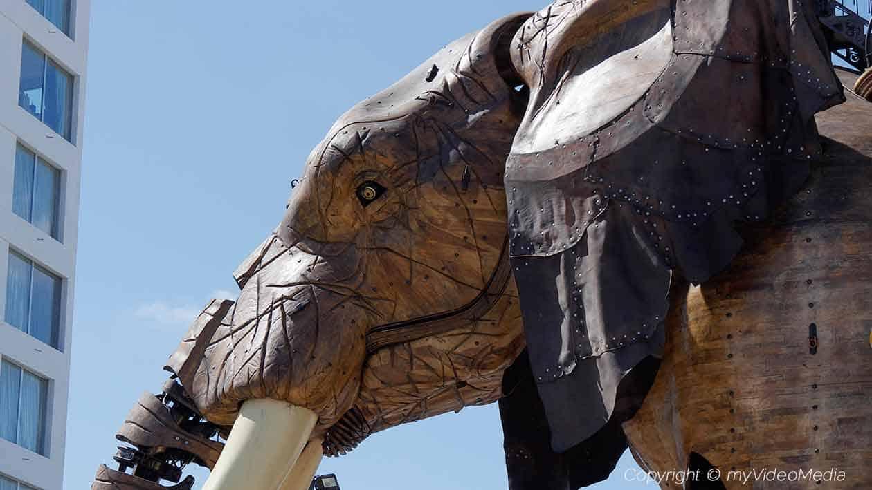 Les Machines de l'ile Der grosse Elefant